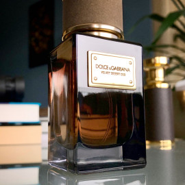 Velvet Desert Oud - Dolce & Gabbana