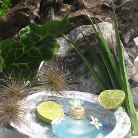 L Fleur de Corail von Lolita Lempicka