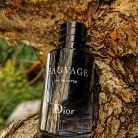 Sauvage (Eau de Parfum) by Dior
