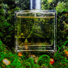Undergrowth (2020) by Rook Perfumes