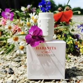 #Sommer-bunt für Fresh ... und sommerliche Blumengrüße für all die lieben Besuche und Kommis - Danke, Ihr Lieben!!:-))