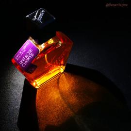 № 08 - Une Rose Chyprée von Tauer Perfumes