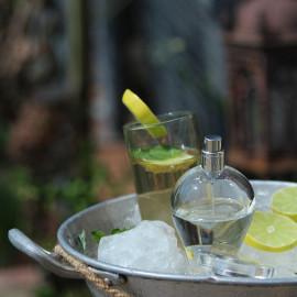 Gin Fizz by Lubin