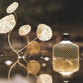 Allen Parfumos einen guten Rutsch ins neue Jahr und bleibt alle gesund. Und natürlich vielen Dank für Eure Kommentare.