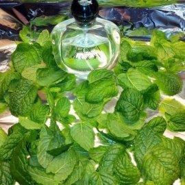 Acqua di Gioia (Eau de Parfum) - Giorgio Armani
