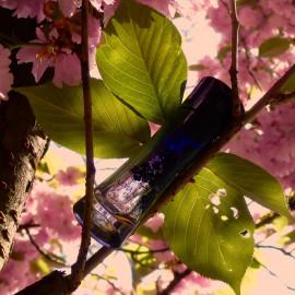 Armani Code pour Femme (Eau de Parfum) von Giorgio Armani