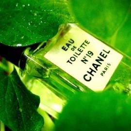 N°19 (Eau de Toilette) by Chanel