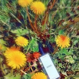 Zara Emotions N°07 - Fleur de Patchouli von Zara