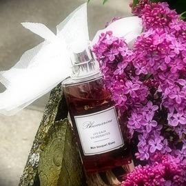 Les Eaux Exubérantes - Mon Bouquet Blanc by Blumarine