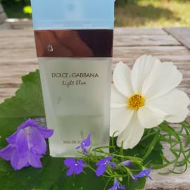 Light Blue (Eau de Toilette) von Dolce & Gabbana