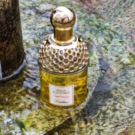Aqua Allegoria Pamplelune von Guerlain