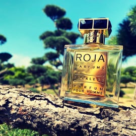 Reckless pour Homme (Parfum) von Roja Parfums