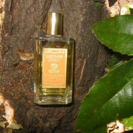 Lankaran Forest von Maria Candida Gentile