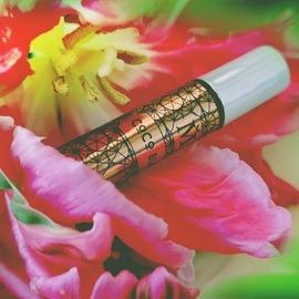 Coco Blanc (Extrait de Parfum) by House of Matriarch