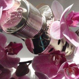 Nahema (Parfum) by Guerlain