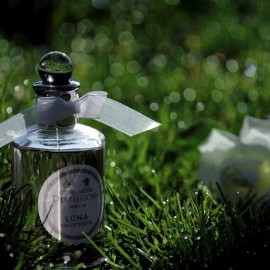 Luna by Penhaligon's