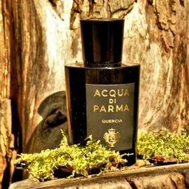 Quercia (Eau de Parfum) von Acqua di Parma