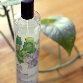 Aloe & Soft Linen / Aloes & Douceur de Lin von The Body Shop