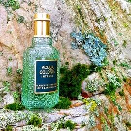 Acqua Colonia Intense - Wakening Woods of Scandinavia - 4711