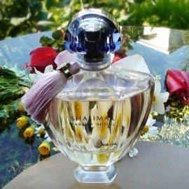 Shalimar Parfum Initial L'Eau von Guerlain