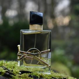 Libre (Eau de Parfum) by Yves Saint Laurent