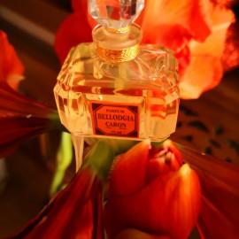 Bellodgia (Parfum) by Caron