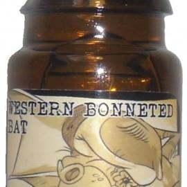 Western Bonneted Bat von Black Phoenix Alchemy Lab