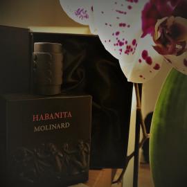 Habanita (2012) (Eau de Parfum) by Molinard