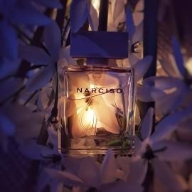 Narciso (Eau de Parfum Poudrée) - Narciso Rodriguez