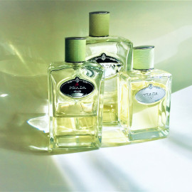 Infusion d'Iris (Eau de Parfum) (2007) by Prada