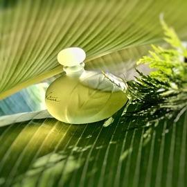 Nature (Eau de Parfum) by Yves Rocher