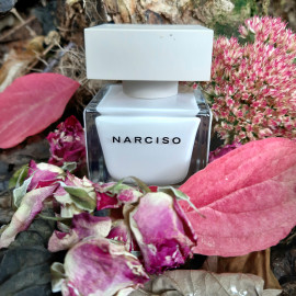 Narciso (Eau de Parfum) - Narciso Rodriguez