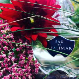 Eau de Shalimar by Guerlain