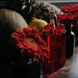 Wild Rose Aoud - Mancera