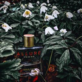 Allure Homme (Eau de Toilette) von Chanel