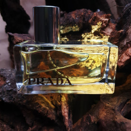 Prada (2004) / Prada Amber by Prada