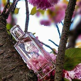 Comme une Evidence L'Eau de Parfum von Yves Rocher