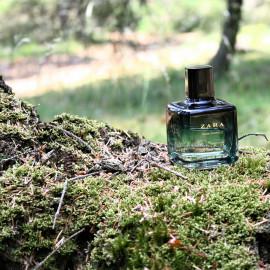 Dark Emerald by Zara
