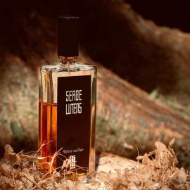 Ambre sultan (Eau de Parfum) by Serge Lutens