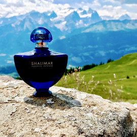 Shalimar goes swiss alps ;)