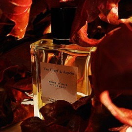 Collection Extraordinaire - Bois d'Iris - Van Cleef & Arpels