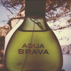 Agua Brava (Eau de Cologne) von Puig