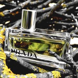 Prada (2004) / Prada Amber von Prada
