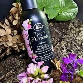 Orchidea della Cina by Tesori d'Oriente