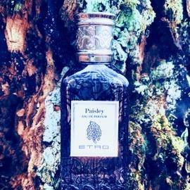 Paisley - Etro