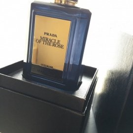 Olfactories - Miracle of the Rose by Prada