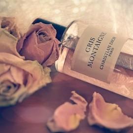 ... altrosa Rosen - verborgen unter einem kühlen grauen Duftschleier ......