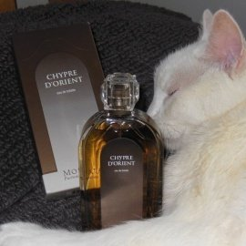 Chypre d'Orient by Molinard