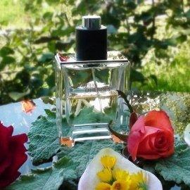 Terre d'Hermès (Parfum) von Hermès