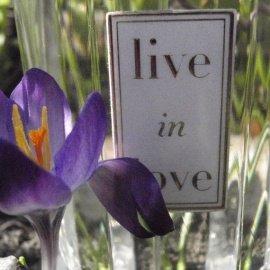 Live in Love by Oscar de la Renta